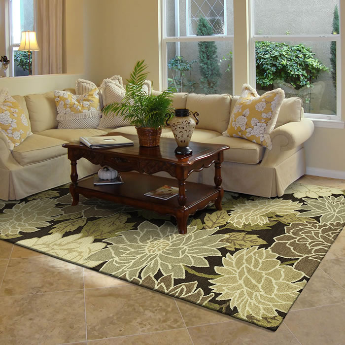 Transitional area rugs contemporary area rugs in kansas city - Living room area rugs ...